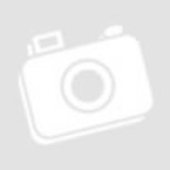 Bosch Barkács Bosch excentercsiszoló ø125 270W koffer PEX 300 AE